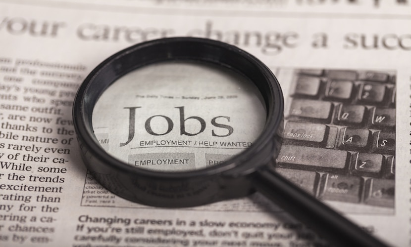 lupa procurando emprego