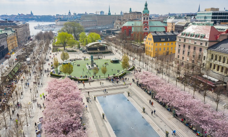 Tudo sobre morar na Suécia