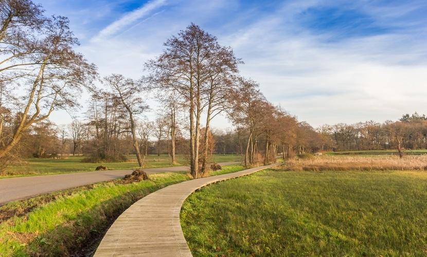 Vida no campo na Holanda