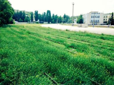 As Crimea's economy after the Russian occupation has slowed to a standstill, the railroad yard in Sevastopol is being overtaken by grass. June 2015 (Image: Twitter)