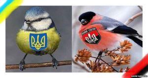 rightsectorbird