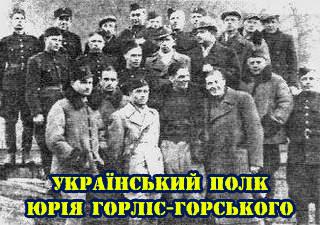 Some of the Ukrainian volunteer troops led by Gorlis-Gorsky (Image: Sichovyk.com.ua)
