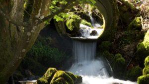 Wasserfall_Wald