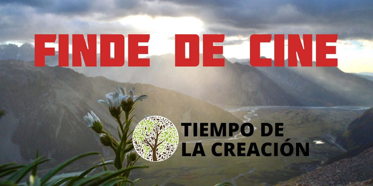 EL MEDIO AMBIENTE Y EL CINE. RECOMENDACIONES JPIC 4.