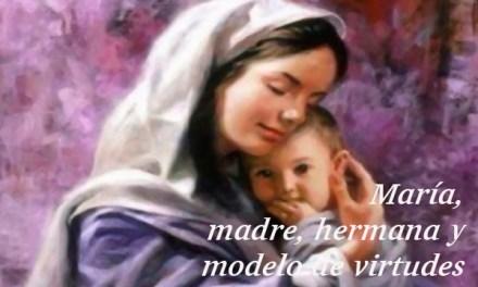 Preparación Solemnidad de la Virgen del Carmen