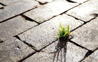 Pavistamp: optimizar el impacto medioambiental de los materiales de construcción