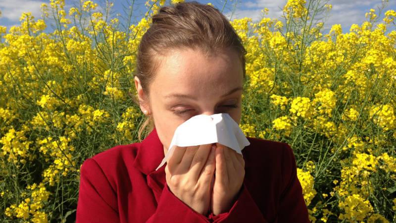 Alergias durante el verano