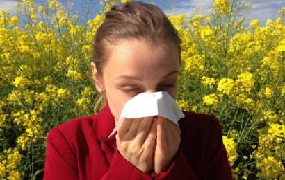 Cómo prevenir las alergias durante el verano