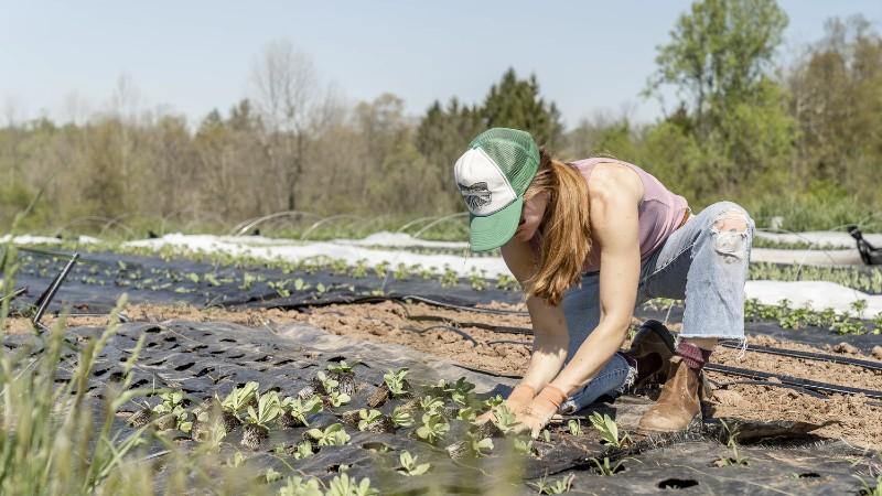 La FAO insta al G20 a invertir en un planeta saludable para obtener alimentos saludables
