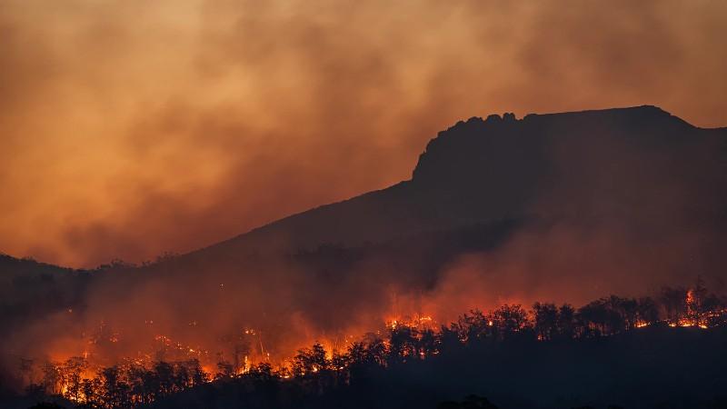 Incendio forestal cambio climático