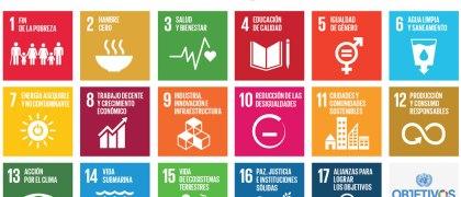 Sustainable Development Goals_E_Final sizes