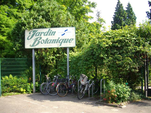 Straßburgs botanischer Garten – ein kleines Paradies – Le jardin botanique de Strasbourg – un petit paradis