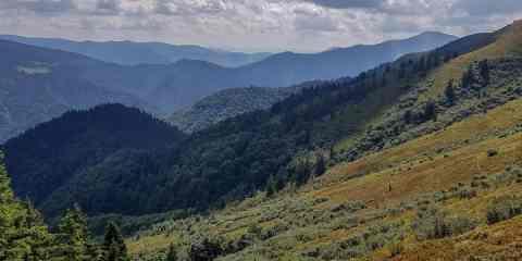 Darvaika Wilderness