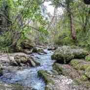 Defining and protecting Wilderness in Europe