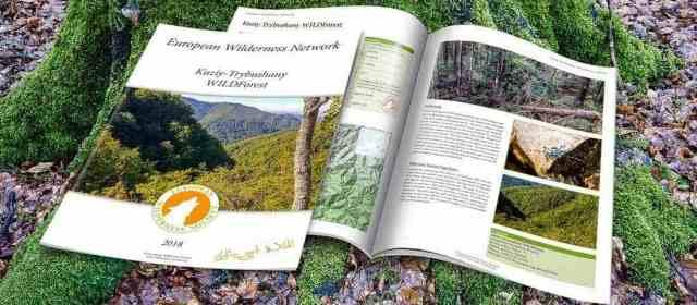 WILDForest in Ukraine – New Publication