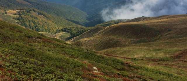 Natural wonder on a tri-border: Kongura Wilderness