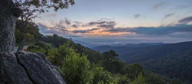Mitigating the Disintegration of Wilderness