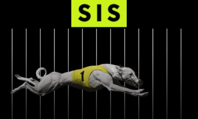 SIS publishes UK greyhound return to racing schedule