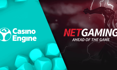NetGaming signs content distribution agreement with EveryMatrix