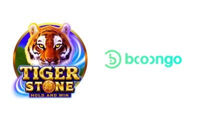 booongo-tiger stone