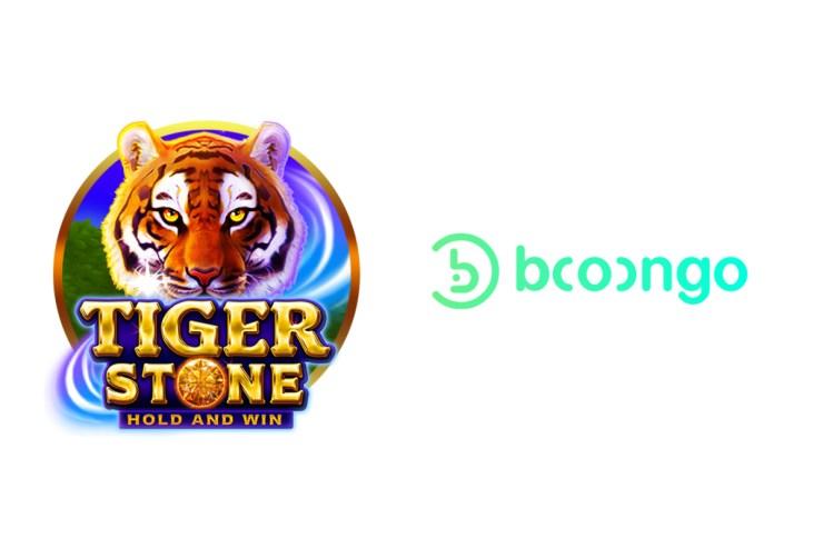 batu booongo-harimau
