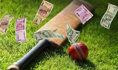 A Look at Indian Online Sports Betting Trends