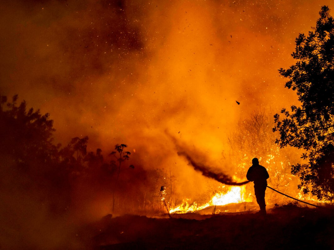 Casualties Reported in Cyprus' Forest Fire