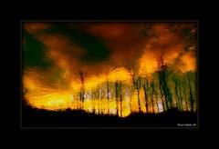 Le mécanisme de protection civile «rescEU» activé pour lutter contre les incendies de forêt en Grèce