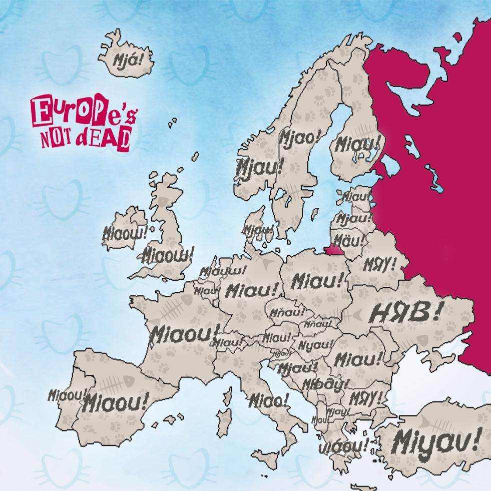 Miaou européens