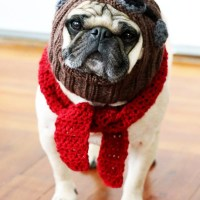 The Red Baron - Dog Hat and Scarf Set