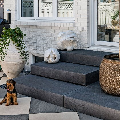 euro-tile-stone-west-of-main-2cm-porcelain-pavers-backyard-dog