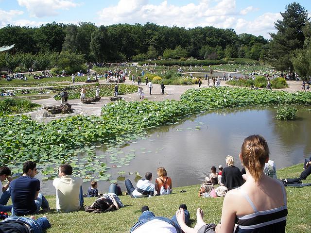 Festival de Jazz en el Parque Floral