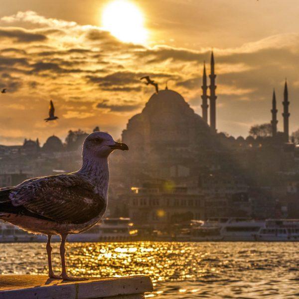 12 Razones para Viajar a Estambul