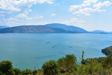 Butrint Lake near Ksamili and Saranda