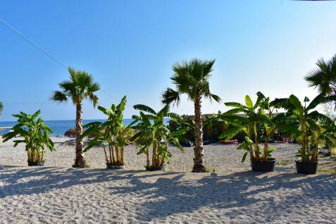 Dhërmi beach, Albania