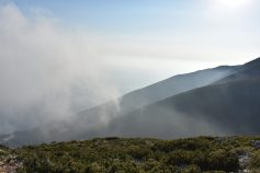 Llogara Pass immersed in the clouds, Albania