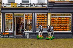 Cheese shop in the centre of Delft