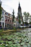 Canal con Flores en Delft