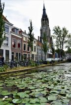 Flowery canal in Delft