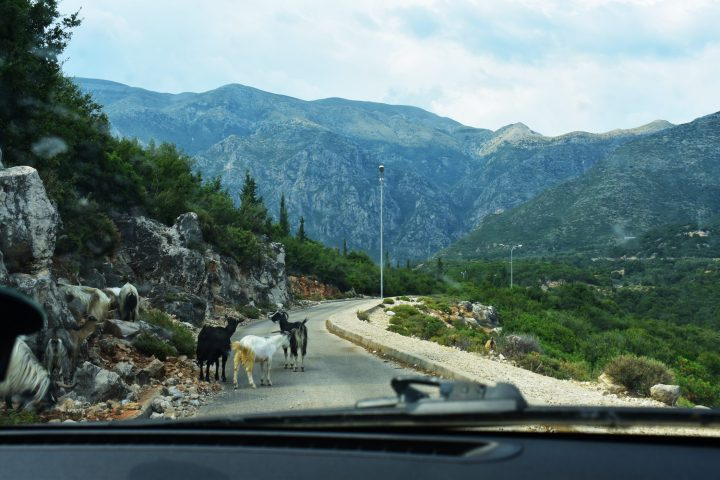 Is it safe on the roads in Albania? Traffic jam