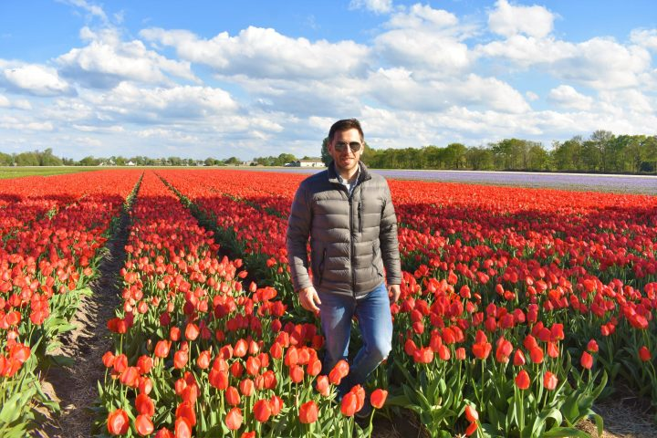 Among the tulip fields in Lisse