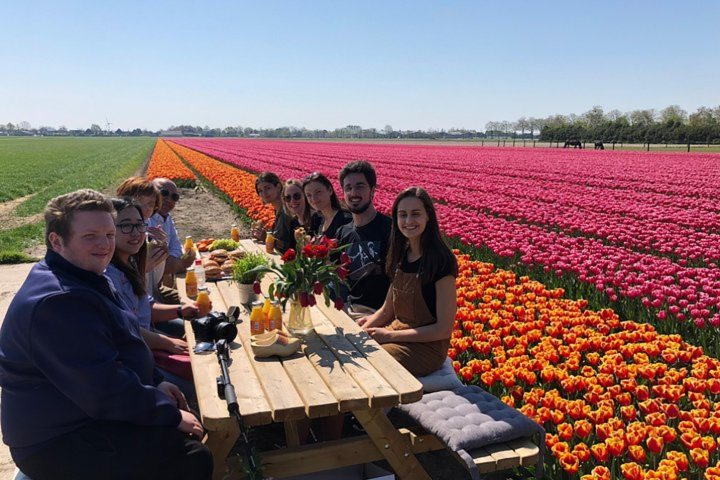 How about a Dutch lunch in the middle of a fragrant tulip field? -Photo by Tulip Tours Holland