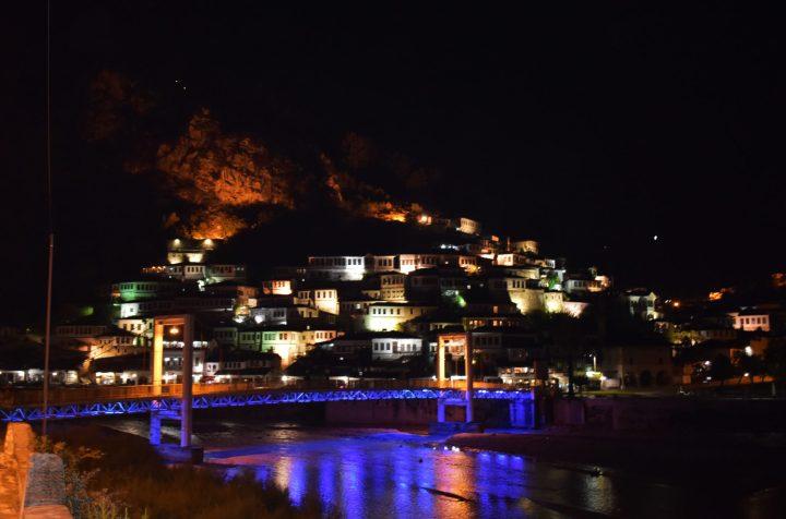 Berat iluminada durante la noche