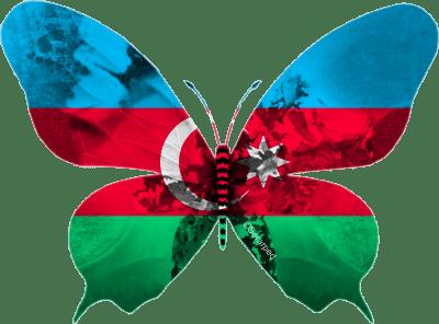 Azerbaïdjan 2013 : Farid, celui qu'on attendait