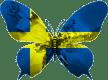 Suède-papillon