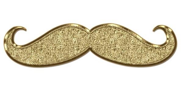 Les Moustaches (3)