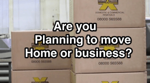 planning to move business