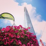235365__365_on_my_way_to_Sunday_lunch.__growing__flowers__london__crane__sky