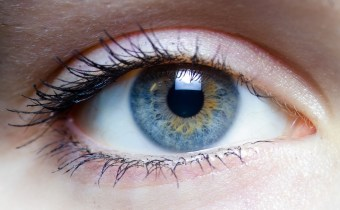 The cure for macular degeneration: a race against time