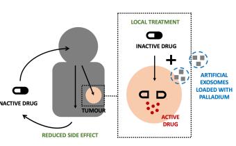Rare palladium metal provides new cancer therapies
